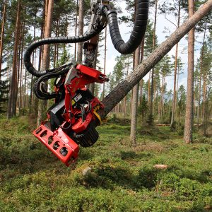 SP 461-LF Forestry Harvesting Head