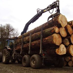 Botex EURO-11 Forestry Timber Trailer
